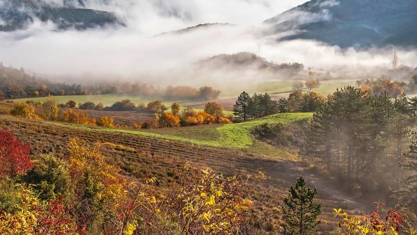 10. Un matin d'automne Bernard Fonfreyde Photo Club de Bourgoin-Jallieu