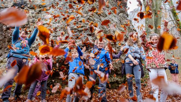 12. Bataille de feuilles Claude Prédal Club Photo Biviers