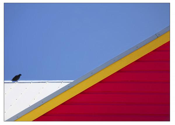"15. ""Triangulation""  de Lionel Valette (Photo-Club Rivatoria)"